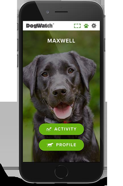 DogWatch app
